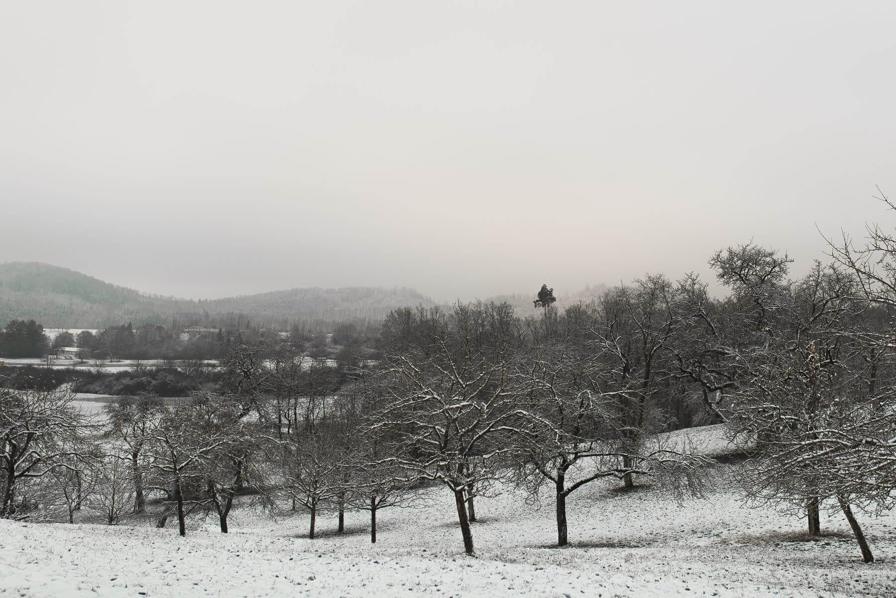 Obstwiese bei Schwäbisch Hall im Schnee mit Blick auf Einkorn