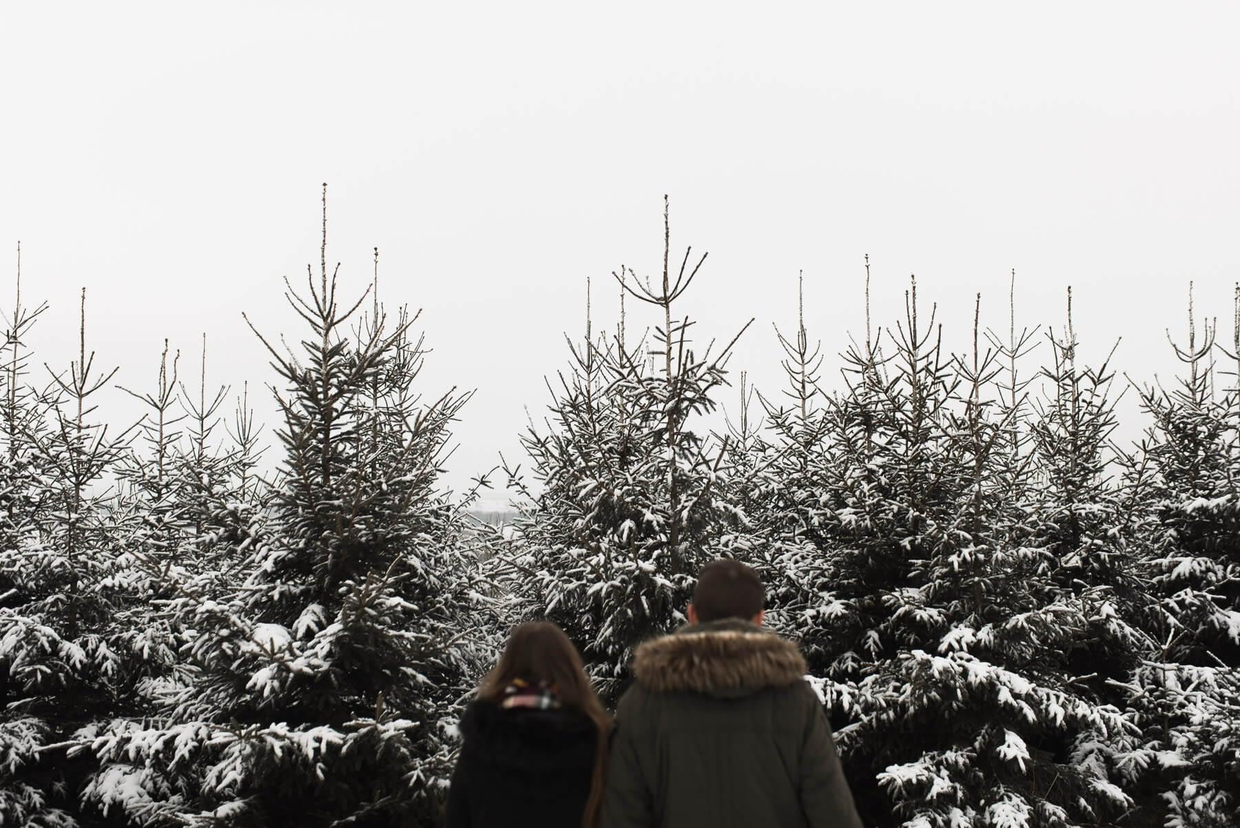 Nadelwald mit Schnee und Paar während Shooting unscharf